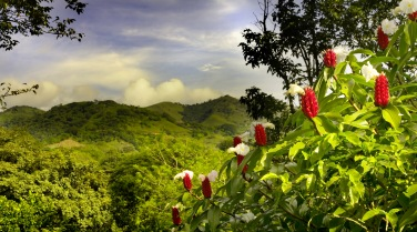 Costa Rica - guide - regions - not central valley