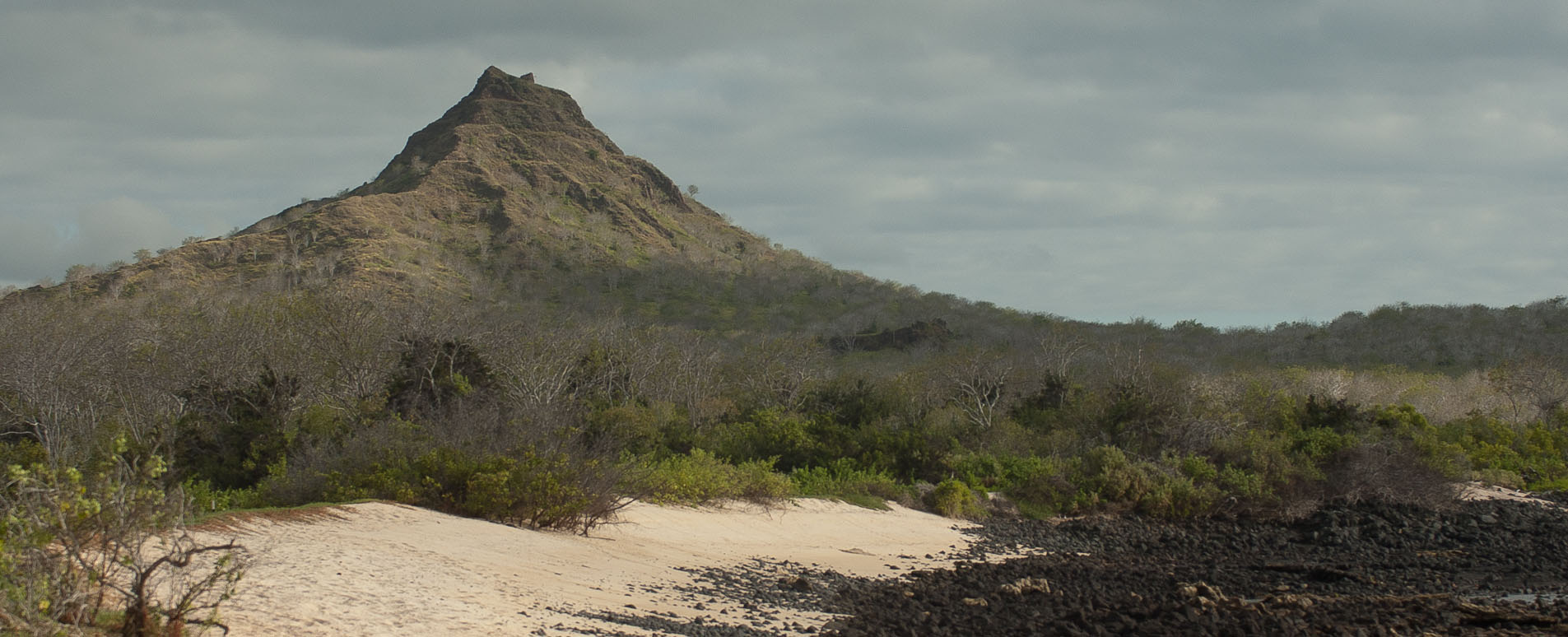 galapagos tailor made holidays