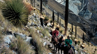 Peru 'Lares community trek'