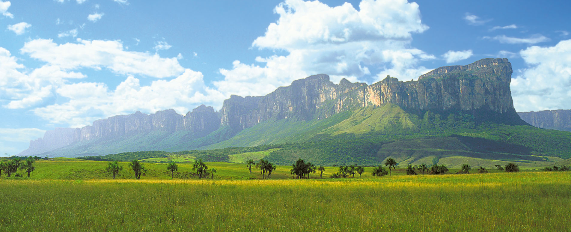 Visit The Gran Sabana Venezuela Travel Guide Geodyssey